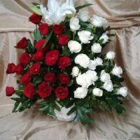 IMG_20151214_175210