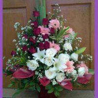 IMG_20150915_193632