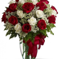 Red and white roses valentine flowers with tiny white flowers arrangement