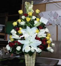 Floris Bunga Meja Anggrek di Tebet Jakarta Selatan