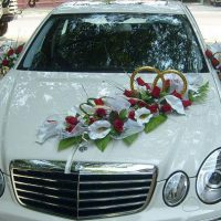wedding-car-decorations-9