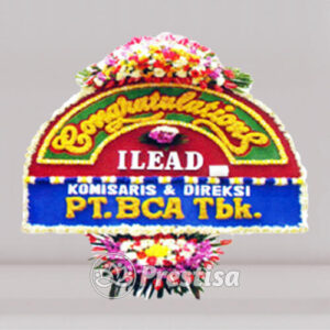 BP-C JKT 638