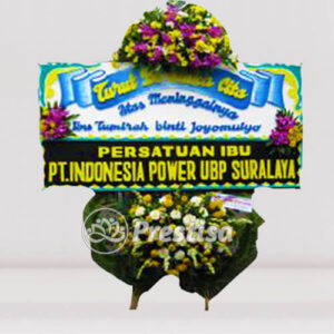BP-DC MGG 3