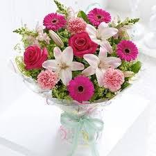toko bunga bengkulu K BGL TGH-23