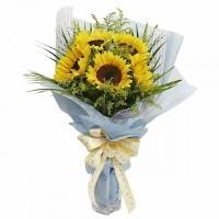 florist bunga matahari di karawang jawa barat