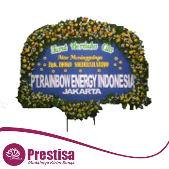 sby 46