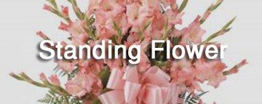 Banner Navigasi Standing Flower