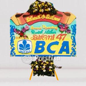 BP-C BTG 12