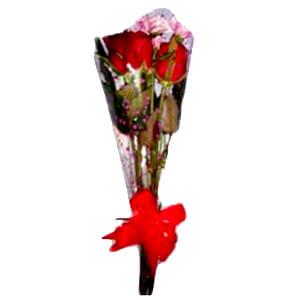 toko bunga banjarbaru hb 5