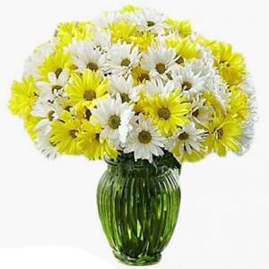 toko bunga cirebon bm 4