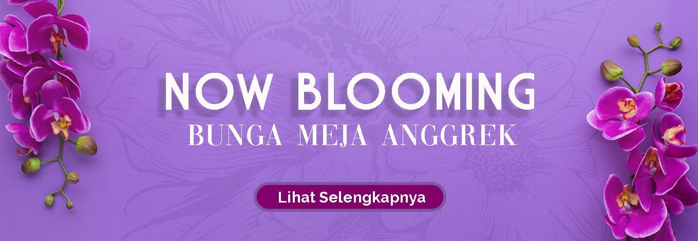 Toko Bunga Jakarta Banner Simple