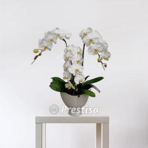 Jual Bunga Meja Rangkaian Bunga Asli Prestisa